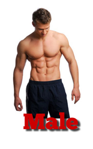 I am a male looking to lose weight