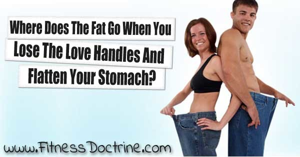 Where-does-the-fat-go-when-you-lose-weight