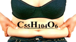 fat starts out as carbon and hydrogen